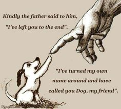 Dog is friend