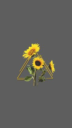 Check out this awesome collection of Sunflower Aesthetic wallpapers, with 35 Sunflower Aesthetic wallpaper pictures for your desktop, phone or tablet. Cute Tumblr Wallpaper, Pastel Wallpaper, Wallpaper Iphone Cute, Screen Wallpaper, Aesthetic Iphone Wallpaper, Cool Wallpaper, Cute Wallpapers, Aesthetic Wallpapers, Aesthetic Backgrounds