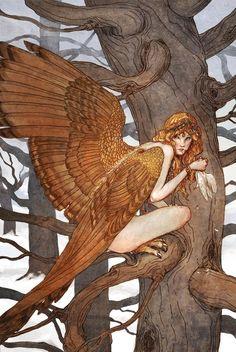 Harpy by Erin Kelso