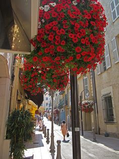 The charming streets of Antibes along the French Riviera :-)