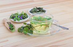 Šalvějový sirup je skvělý lék na bolest v krku a na kašel, můžeme ho snadno připravit jak z čerstvé, tak i ze sušené bylinky.
