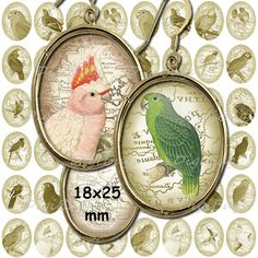 Printable Parrot Images, Digital Collage Sheet, 18 x 25 mm Ovals, Old Map, Earring Images, Parrot Pendant Images, Printable Download a2 Parrot Image, Bird Illustration, Collage Sheet, Digital Collage, Images, Printables, Birds, Map, Pendant