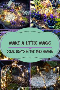 Make a little magic using solar LED twinkle lights in your fairy garden. Instructions and recommended plants are included.