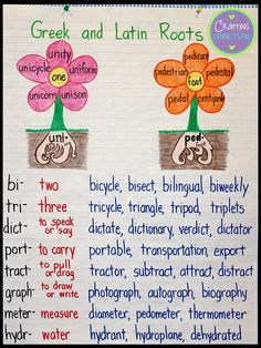 and Latin Roots Anchor Chart Anchor your students' understanding of Greek and Latin roots with this anchor chart!Anchor your students' understanding of Greek and Latin roots with this anchor chart! Teaching Grammar, Teaching Writing, Teaching English, Grammar Rules, Grammar Lessons, Teaching Spanish, Ela Anchor Charts, Reading Anchor Charts, Latin Root Words