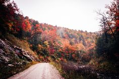One of my favorite things about Vermont, besides the fall foliage, is how small it is.  It is incredibly easy for visitors to see as much, or as little, of this glorious state as they want.   The back roads of Vermont hold some of America's most beautiful scenes.  Huge red barns, horse farms, sloping hills, country stores, and of course the colorful fall foliage.  So here is a list of the 5 best scenic drives in Vermont for all the leaf peepers! The Places Youll Go, Places To Visit, New England Fall Foliage, New England Travel, Autumn Aesthetic, Autumn Photography, Horse Farms, Vermont, Beautiful Places