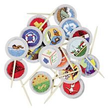 Eagle Scout® Merit Badge Cake Picks