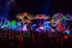 It was a neon jungle at the Electric Daisy Carnival 2015.