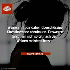 28 wissenswerte Fakten - - New Ideas Matou, True Words, Faith Quotes, Good To Know, True Stories, Peter Pan, Fun Facts, Meant To Be, Stress