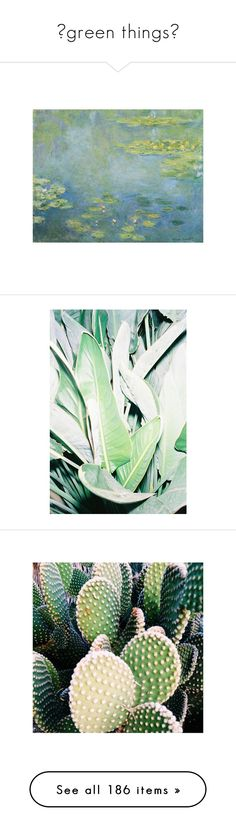 """△green things△"" by eveebaptiste ❤ liked on Polyvore featuring pictures, photos, art, image, backgrounds, green, plants, flowers, instagram and icon"