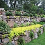 Retaining wall with multiple levels