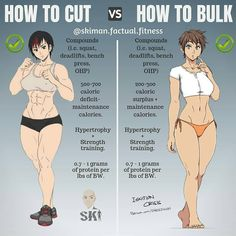 *HOW TO CUT VS HOW TO BULK* by @skiman.factual.fitness ⠀⠀⠀⠀⠀⠀⠀⠀⠀ So this is a common everyday question that I get and there's a…