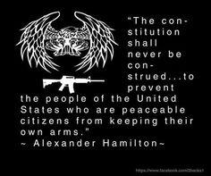 Alexander Hamilton Constitutional Rights, Alexander Hamilton, Citizen, The Unit, Movie Posters, Film Poster, Billboard, Film Posters