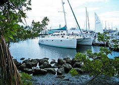 Coconut Grove, Miami, FL 01 by Ed in South Florida, via Flickr