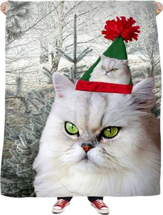 Check out my new product https://www.rageon.com/products/christmas-cat-fleece-blanket on RageOn!