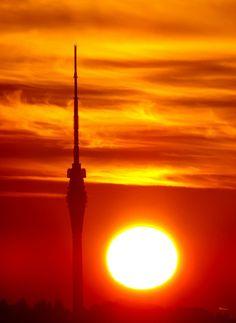 Sonnenaufgang mit TV Turm von Max Steinwald