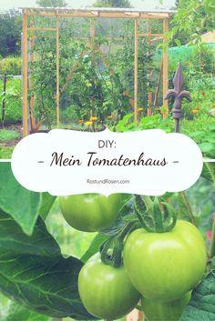 Garten-DIY: Wie ich mein Tomatenhaus gebaut habe - eine Anleitung. In German - translatable