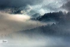Legends of the Fall by AdnanBubalo. Please Like http://fb.me/go4photos and Follow @go4fotos Thank You. :-)