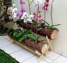 5 Engaging Tips AND Tricks: Vegetable Garden Landscaping Diy garden landscaping layout lawn. Orchids Garden, Orchid Plants, Garden Art, Garden Design, Decoration Plante, Flower Planters, Backyard Landscaping, Landscaping Ideas, Backyard Ideas