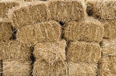 Check out Hay bales in a large pile by Zigzag Mountain Art on Creative Market Raised Garden Beds, Raised Beds, Raised Gardens, Village Map, South Indian Weddings, Hay Bales, Bridal Pictures, Down On The Farm, Mountain Art