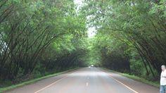 Camino a Santa Rita