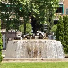 """Plaza Dr. Mariano de Cavia, Madrid, y """"fuente de los patos"""", que tiene guasa porque son gaviotas."""