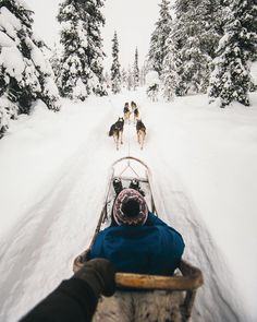 """Nordic modes of transportation. #getoutdoors #upknorth Snow commute through Lapland. Perfect shot by @eljackson"""