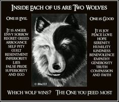Inside each of us are two wolves. One is evil. One is good. Which wolf wins? The one you feed most. Joy, peace, hope, serenity, humility, kindness, benevolence, empathy, generosity, truth, compassion and faith.... VS. anger, sorrow, regret, greed, arrogance, self pity, guilt, resentment, inferiority, lies, false pride, superiority, and ego. This message is like a mirror reflection of the message of the Gospel / Bible, though it's said to be a Native American proverb.