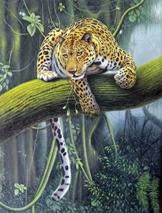 Original Hand Painted Artist: Jiu Jiu   Animal Oil Painting,75cm x 100cm(29〃 x 39〃),6470011-z