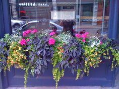 flower box idea
