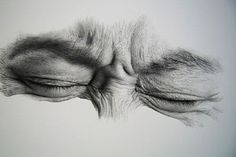 """These realistic pencil renderings from an artist by the name of Kim Ji-Hoon are seriously blowing my mind right now. I don't even think my eyes are capable of seeing that much detail, let alone re-creating it. We came across some intricatley drawn illustrations of body parts (Arnold Schwarzenegger throwback), landscapes and animals from this incredible talent who chooses to remain pretty anonymous."""