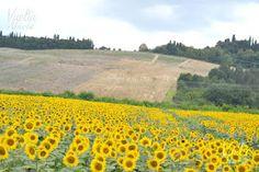 Toscana, un lugar de ensueño.