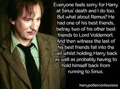 Who cares how Harry felt? I love Remus and Sirius and when Sirius died it broke my heart Harry Potter Puns, Harry Potter Marauders, Harry James Potter, Harry Potter Characters, Harry Potter Universal, Harry Potter World, Tom Felton Harry Potter, Harry Potter Voldemort, Remus And Sirius