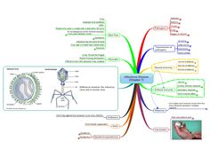 Controling Infectious disease free mind map download