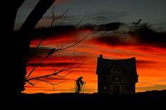halloween - Background hd 1920x1280