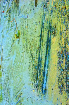 Abstract Photograpy #8063