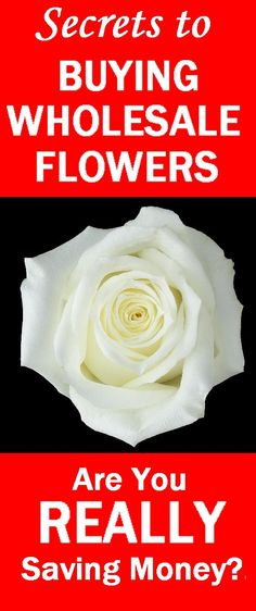 Comparison Shopping for Online Wedding Flowers - Is Wholesale COSTING You More?