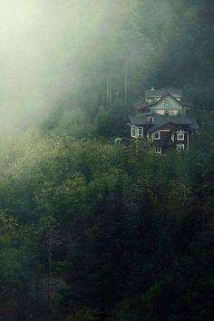 Quiet morning fog
