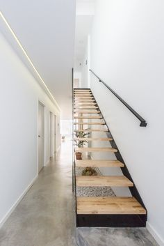 Stairs, treads and risers, handrails . elements of a ladder. They are not so much and yet this architectural and structural designs in a thousand ways item. Cantilever Stairs, Stair Handrail, Open Staircase, Staircase Design, Concrete Stairs, Stairs Architecture, Modern Stairs, Interior Stairs, House Stairs