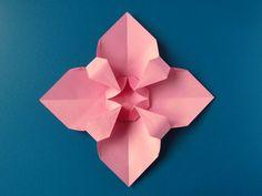 Fiore quadrato - Square Flower - Francesco Guarnieri