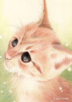かまってニャン Cat Illustrations, Illustration Art, Cat Character, Cat Pin, Cat Drawing, Kitty Kitty, Animal Paintings, Dog Art, I Love Cats