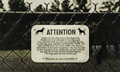 """Night Vale has a newly opened Dog Park. DO NOT GO IN THE DOG PARK. 
