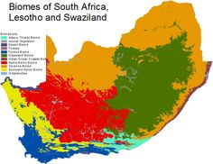 South Africa Vegetation Map | Atlas   Africa | Pinterest