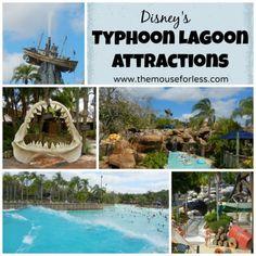 Disney's Typhoon Lagoon Attractions