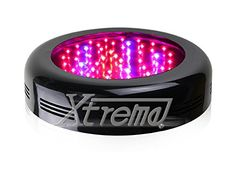 Special Offers - Xtreme Work Apollo UFO Full Spectrum 135W (453W) LED Grow Light for Indoor Plant Growing Plants And Garden Greenhouse With IR - In stock & Free Shipping. You can save more money! Check It (April 19 2016 at 11:59PM) >> http://growlightusa.net/xtreme-work-apollo-ufo-full-spectrum-135w-453w-led-grow-light-for-indoor-plant-growing-plants-and-garden-greenhouse-with-ir/
