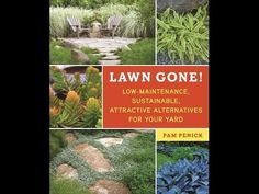 Book signing for Lawn Gone! this Sunday, 12/7, 1-3 pm at the Lady Bird Johnson Wildflower Center in Austin. Come say hi! Free admission to the gardens. Watch this book trailer for more info, or read my post with full details: http://www.penick.net/digging/?p=30501. | Digging