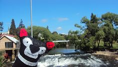 from Tassie, visiting Deloraine in Tasmania. A great place especially during the Deloraine Craft Market once a year Craft Markets, Tasmania, Great Places, Australia, Island, Crafts, Beautiful, Manualidades, Islands