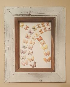 Framed coquina art by MidwestSheller on Etsy Seashell Projects, Seashell Crafts, Beach Crafts, Sanibel Island Shells, Sea Shells, Sand Dollar Art, Make Pictures, Shell Art, Projects To Try