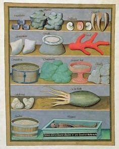 A Medieval Medicine Cabinet: Matteaus Platearius/ Liber de Simplici Medicina / Italy, 12th century. Thanks emma klee for the credit.