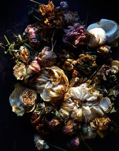 The 'Natura Morta' series by photographers Gentl and Hyers showcases flowers in varying stages of elegant decay. They're unusual and creepy and beautiful — click the link to the see the whole set. Dark Flowers, Beautiful Flowers, Real Flowers, Beautiful Pictures, Dark Floral, Decay Art, Billy Kidd, Growth And Decay, Still Life