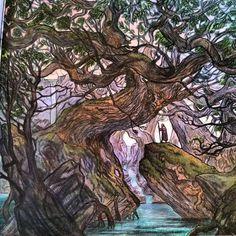 """#gameofthronescoloringbook #adultcoloringbook #art #pencilcrayon #gameofthrones #forest"""
